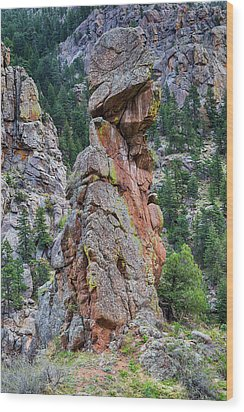 Wood Print featuring the photograph Yogi Bear Rock Formation by James BO Insogna