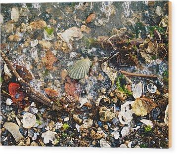 York Beach Shore Wood Print