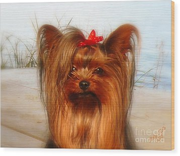 Yorkie Princess Wood Print
