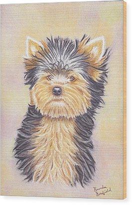 Yorkie Puppy Wood Print by Brenda Bonfield