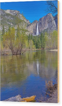 Wood Print featuring the photograph Yosemite Falls Cook's Meadow by Scott McGuire