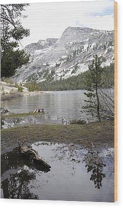 Yosemite Lake Reflections Wood Print