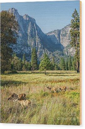 Yosemite Valley At Yosemite National Park Wood Print
