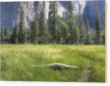 Yosemite Valley Wood Print by Michael Cleere