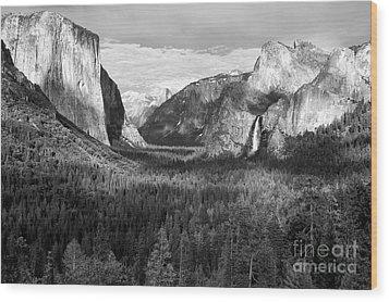 Yosemite Valley Wood Print by Sandra Bronstein