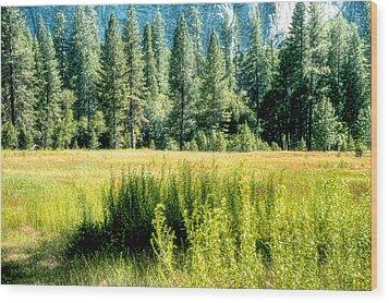 Yosemite Valley2 Wood Print by Michael Cleere