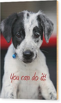 You Can Do It Wood Print by Amanda Barcon