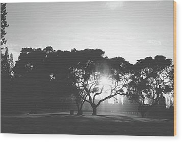 Wood Print featuring the photograph You Inspire by Laurie Search