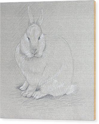 You Looking At Me? Wood Print by Deborah Dendler
