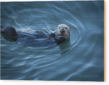 Wood Print featuring the photograph You Otter Take My Picture, Lady by Lora Lee Chapman