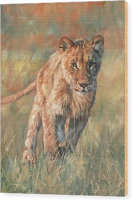 Wood Print featuring the painting Youn Lion by David Stribbling