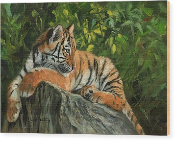 Wood Print featuring the painting Young Tiger Resting On Rock by David Stribbling