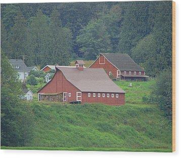 Your Barn Door's Open Wood Print