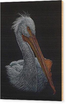 Zamboni Wood Print