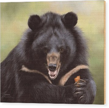 Zebedee Moon Bear - In Support Of Animals Asia Wood Print by Rachel Stribbling