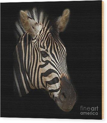 Zebra Wood Print by Barbara Dudzinska