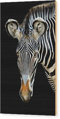 Wood Print featuring the photograph Zebra by Dave Mills