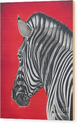 zebra in African sun Wood Print by Ilse Kleyn