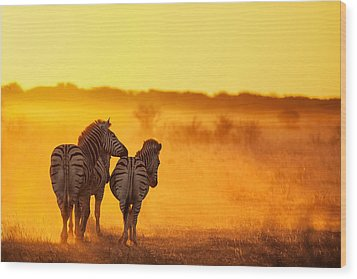 Zebra In The Light Wood Print