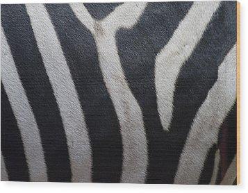 Zebra Wood Print by Linda Geiger