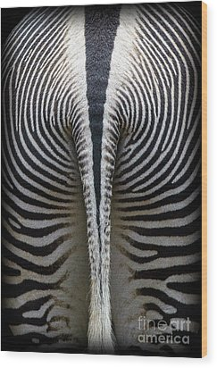 Wood Print featuring the photograph Zebra Stripes by Heiko Koehrer-Wagner