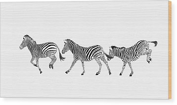 Zebras Dancing Wood Print