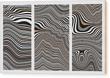Zen Stone Garden Triptych Wood Print