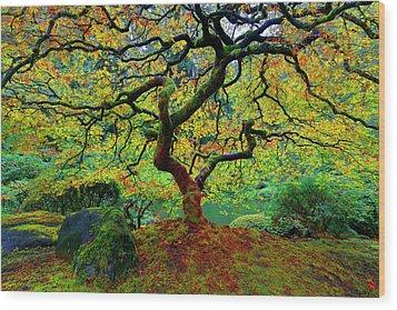 Wood Print featuring the photograph Zentastick by Jonathan Davison