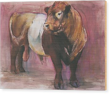 Zeus  Red Belted Galloway Bull Wood Print by Mark Adlington