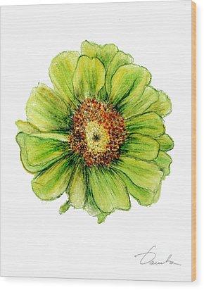Zinnia Wood Print by Danuta Bennett
