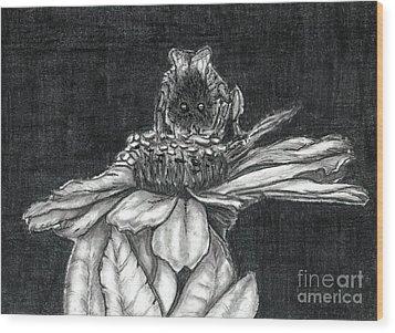 Zinnia Wood Print by Joy Neasley