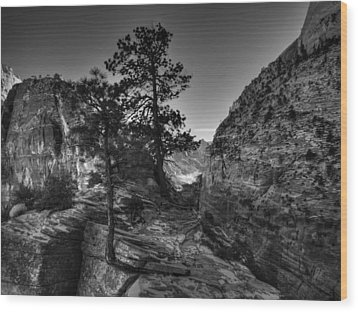 Zion - Angels Landing 001 Bw Wood Print by Lance Vaughn