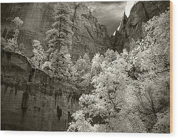 Zion Wood Print by Mike Irwin