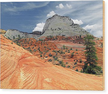 Zion National Park As A Storm Rolls In Wood Print by Christine Till