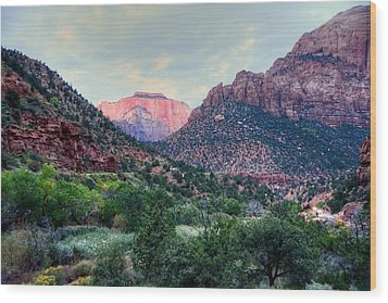 Zion National Park Wood Print by Charlotte Schafer