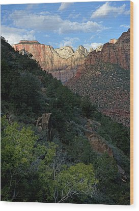 Zion National Park 20 Wood Print by Jeff Brunton
