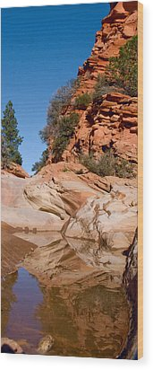 Zion Plateau Water Hole Wood Print by Edwin Voorhees