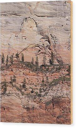 Zion Wall Wood Print by Viktor Savchenko