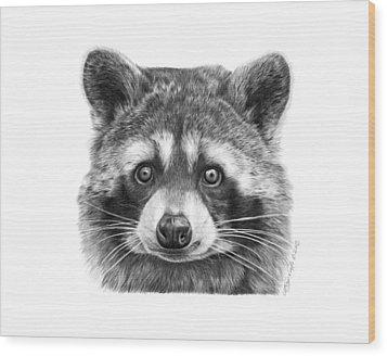 046 Zorro The Raccoon Wood Print by Abbey Noelle