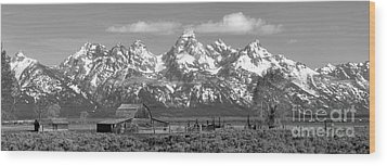 Mormon Row Moulton Barn Black And White Panorama Wood Print by Adam Jewell