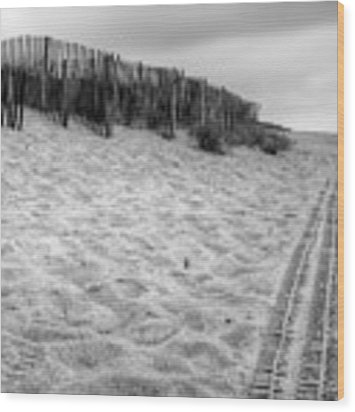 Snow Fence On The Beach Wood Print by Chris Babcock