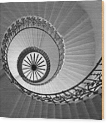 Tulip Staircase Wood Print by Julian Perry