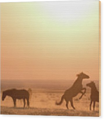 Wild Horse Sunset Wood Print by Wesley Aston