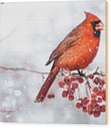 Winter Birds Wood Print by Jill Wellington