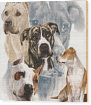 American Staffordshire Terrier Medley Wood Print by Barbara Keith