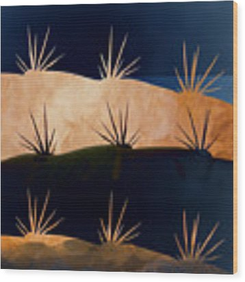 Baja Landscape Number 1 Square Wood Print by Carol Leigh