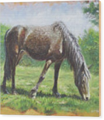 Brown Standing Horse Eating Wood Print by Martin Davey