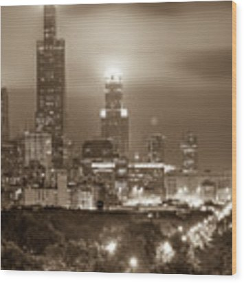 City Of Chicago Skyline Over The Trees In Sepia Wood Print by Gregory Ballos