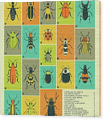 Common Beetles Of North America Wood Print by Jazzberry Blue
