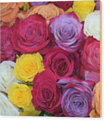 Decorative Wallart Brilliant Roses Photo A41217 Wood Print by Mas Art Studio